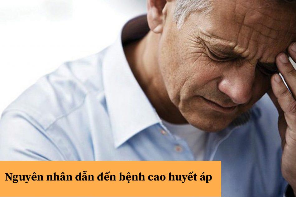 Nguyên nhân dẫn đến bệnh cao huyết áp